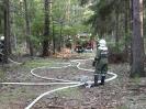 2002-09-07 Abschnittsübung in Neudorf - Waldbrand