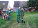 2004-07-21 Einsatz Wespennest