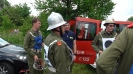 2011-06-04 Bezirkswettkämpfe Pilgersdorf